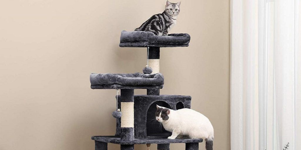 5 Best Cat Trees Of 2021