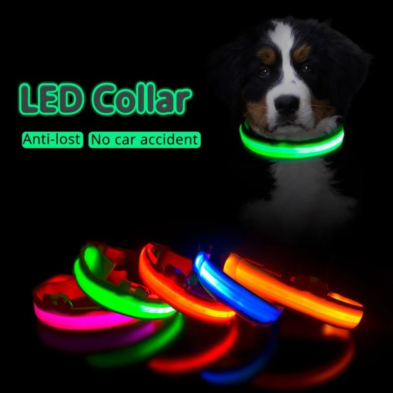 LED USB-Charged Anti-lost Dog Collar