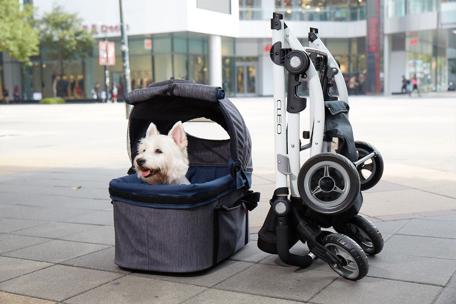 5 Best Dog Strollers to buy in 2021