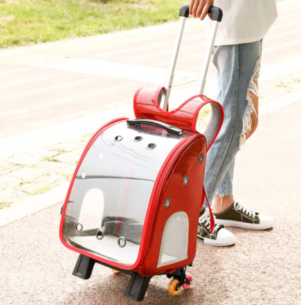 2-wheel backpack to carry pet animals