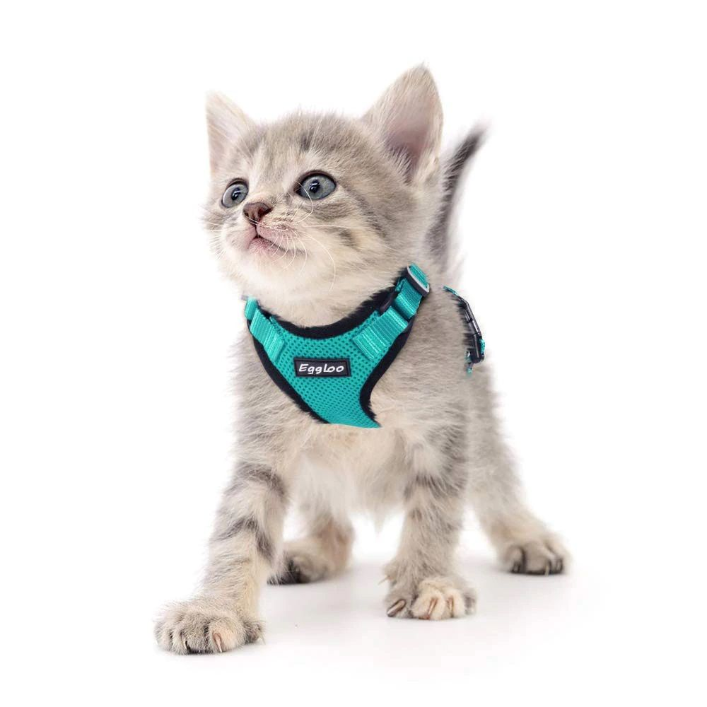 Adjustable kitten harness with reflective stripes