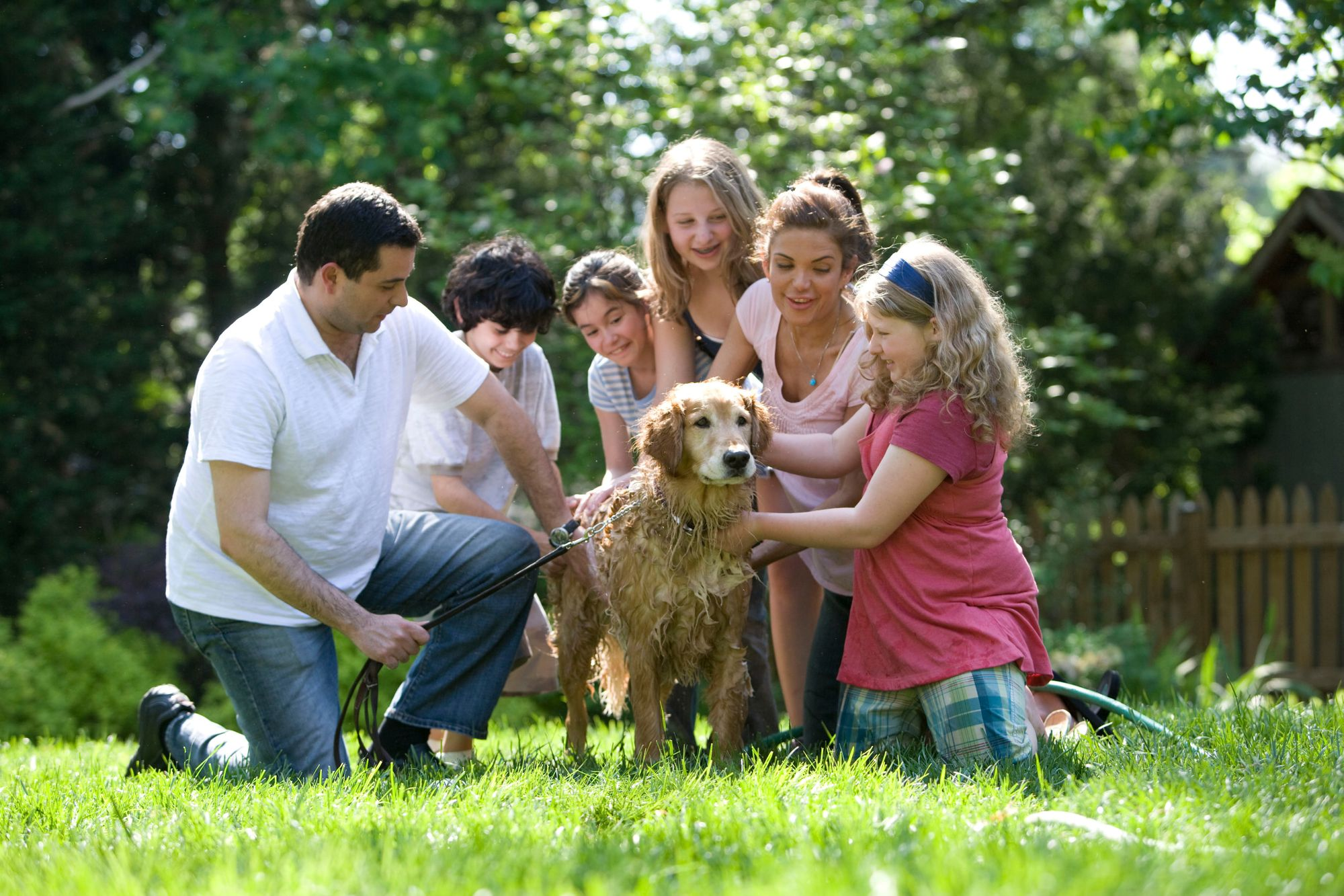 7 best dog breeds for families