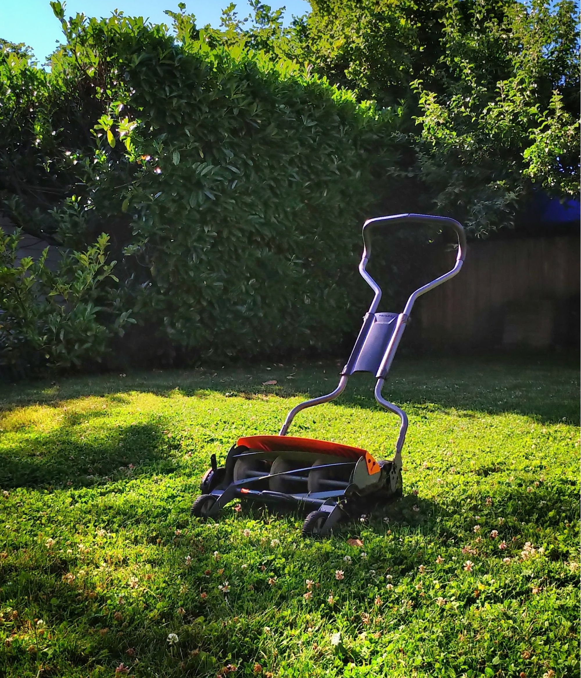 5 best reel mowers to care for your lawn